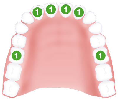 Zähne nachwachsen bleibende können Forschungsdurchbruch: Wachsen